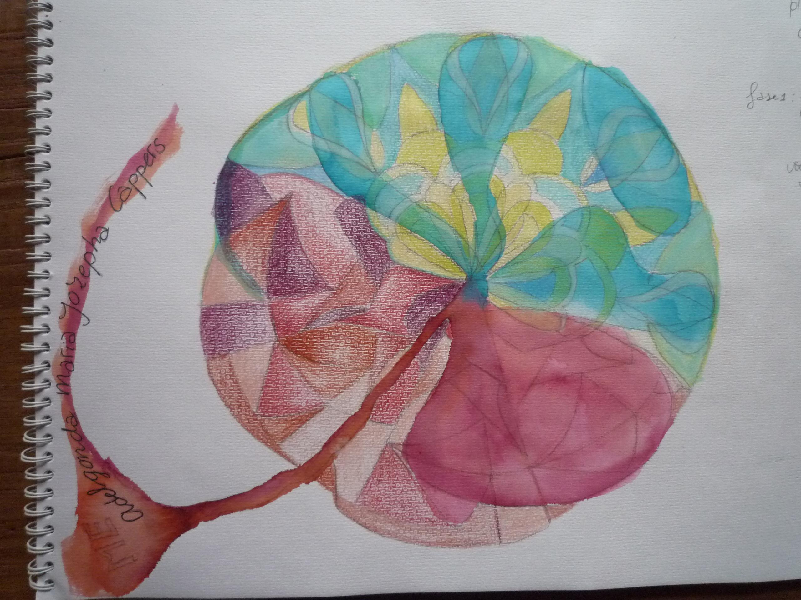 Lotus geboorte
